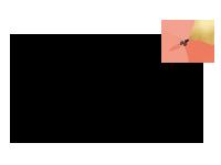 Marina-Logo-Schwarz